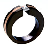 Black Zirconium Ring - Concentric with inlay