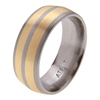 Titanium Ring - Duo Inlay