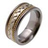 Titanium Ring - Rome